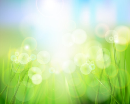 blinking: La naturaleza de fondo. Ilustraci�n del vector. Vectores