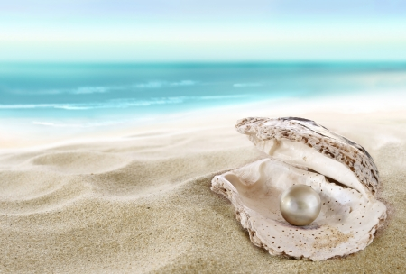 cancun: Shell with a pearl  Stock Photo