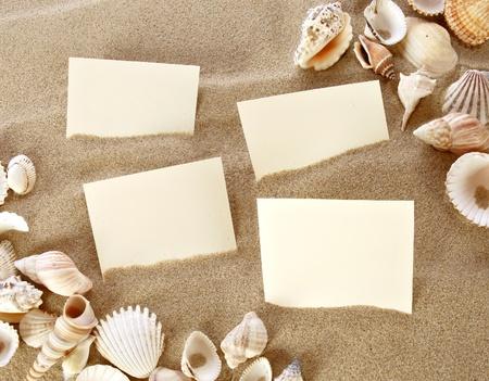 caracolas de mar: Tarjeta en blanco en la arena de la playa