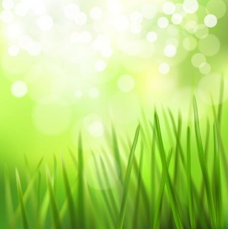 blinking: Meadow. Vector illustration.