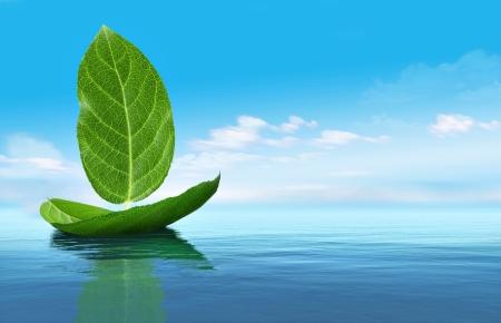Bateau à partir de feuilles