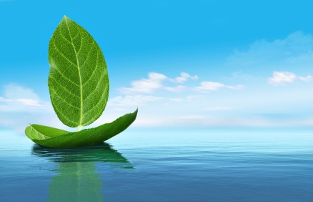 Boat from leaves Stock Photo - 17259122