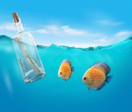 wasserlinie: Flasche mit einer Meldung