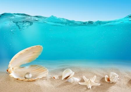 水中の真珠 写真素材