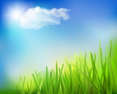 speelveld gras: Grasveld Vector illustratie Stock Illustratie