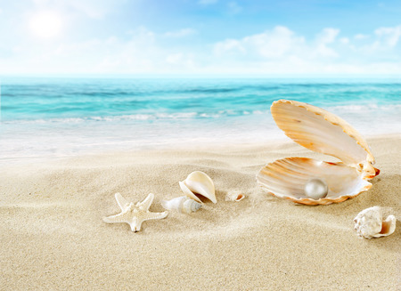 pearl shell: Pearl on the beach