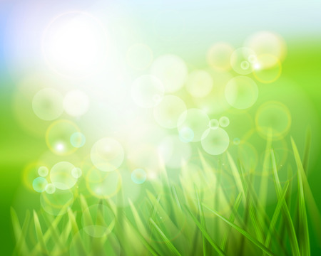 blue and green: Grass in sunlight. Vector illustration. Illustration