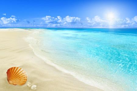 太陽が降り注ぐビーチ