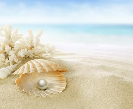 perlas: Perla en los arrecifes de coral Foto de archivo