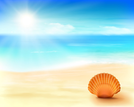 cancun: Shell on the beach. Vector Illustration.