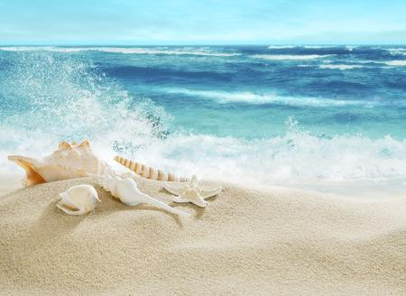 mar: Playa y el salpicar ondas tropicales.