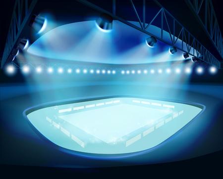 illuminated: Illuminated Stadium. Vector illustration. Illustration