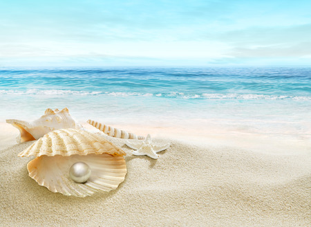 The shell with a pearl.