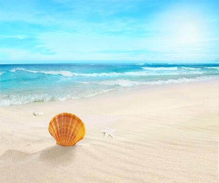 Landscape on a sunny beach.