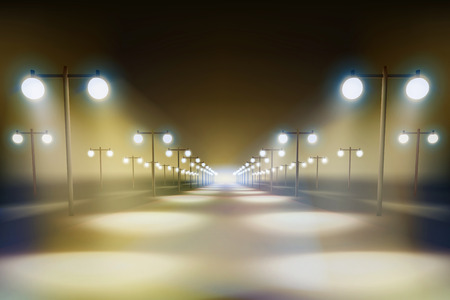 avenue: The way in the night.