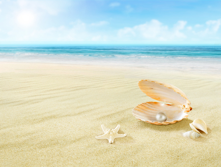 Pearl in seashell. Stock Photo