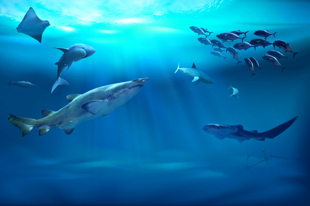 Ocean underwater with marine animals. 3D illustration Stock Photo