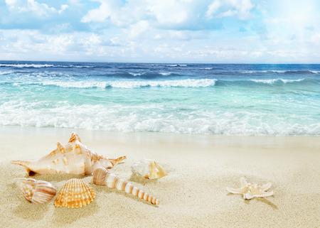 View on sandy beach. 스톡 콘텐츠
