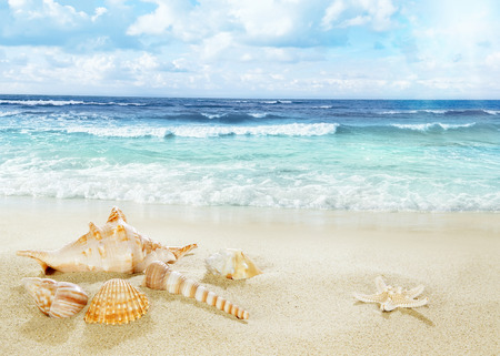 water wave: View on sandy beach. Stock Photo
