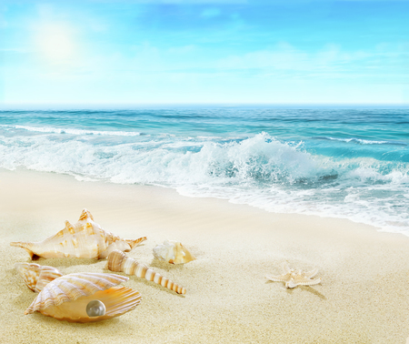 Sandy beach with shells and pearl.