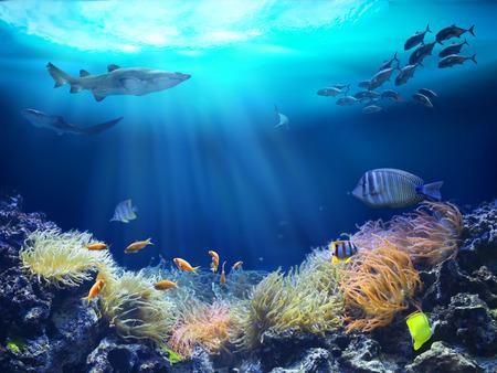 mare agitato: Vita marina in barriera corallina. Illustrazione 3D Archivio Fotografico