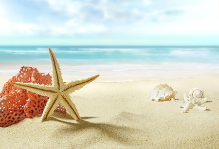 The view on sandy beach.