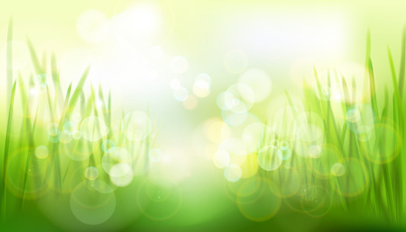 Green meadow. Nature background. Abstract vector illustration.