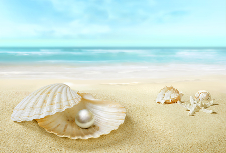 Pearl in an open shell. Sandy tropical beach.