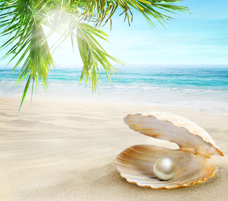 Pearl in an open shell. Sandy tropical beach with coconut palms.