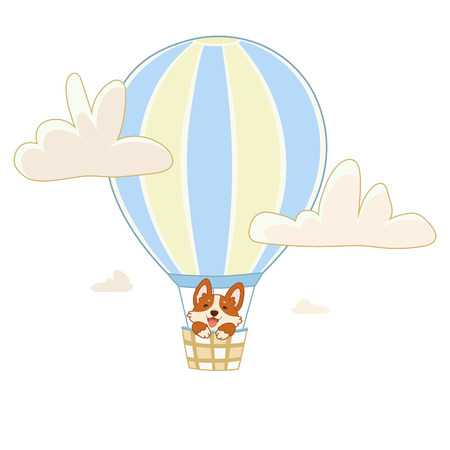 A dog of the breed of corgi dog flies in the basket in a balloon between the clouds.