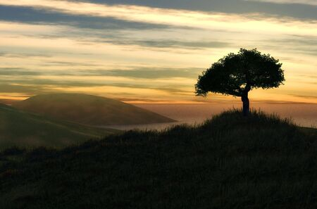 a beautiful one tree hill generated by computer
