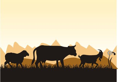 farm's animal in front of the mountains Stock Photo - 677544
