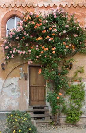saluzzo: door with roses in saluzzo, beautiful city of north italy Stock Photo