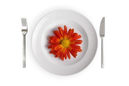 whithe: plato blanco con flor roja aisladas en whithe antecedentes  Foto de archivo