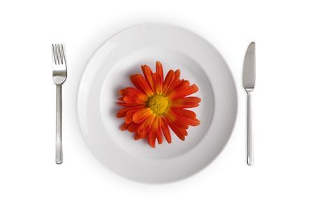 collation: white dish with red flower isolated on whithe