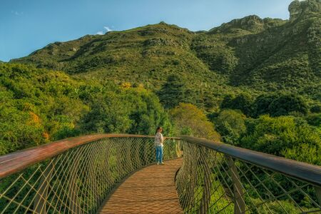 table mountain national park: cape town botanical garden