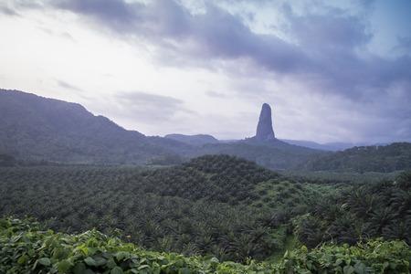 Vue sur la montagne de l'île tropicale de Sao Tomé