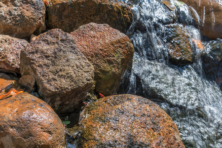 Fluent in water with stones.