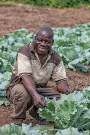 CABINDA/ANGOLA - 09 JUN 2010 - Portrait of African rural farmer. Cabinda. Angola.