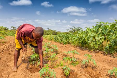 CABINDA / ANGOLA - 09 JUN 2010 - Agricultor rural para labrar la tierra en Cabinda. Angola, África