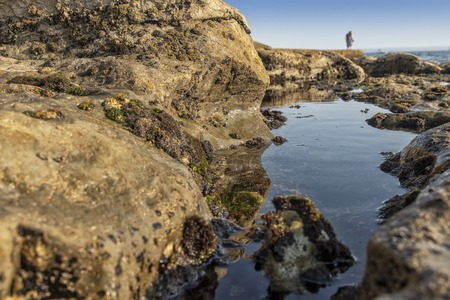 Mature couple walking on the beach with rocks and seaweed. estoril portugal.