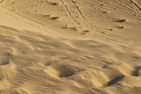 Detailed sand Photograph of Abu Dhabi desert with car tires marks in the sand.