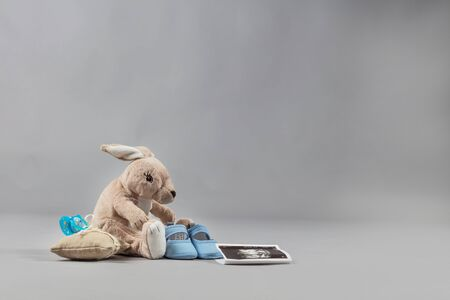 Teddy rabbit with baby shoes and sonography photograph.