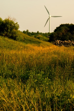 Windturbine in the overgrown natural meadow with a cairn