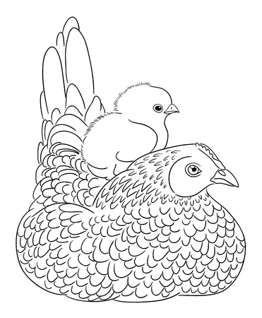 Cute chicken line art 02. Good use for symbol, logo, web icon, mascot, coloring, sign, or any design you want.