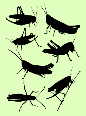Grasshopper animal detail silhouette. Good use for symbol, logo, web icon, mascot, sign, or any design you want.