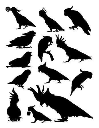 Silhouette de cacatoès. Bon usage pour le symbole, le logo, l'icône Web, la mascotte, le signe ou toute conception souhaitée.