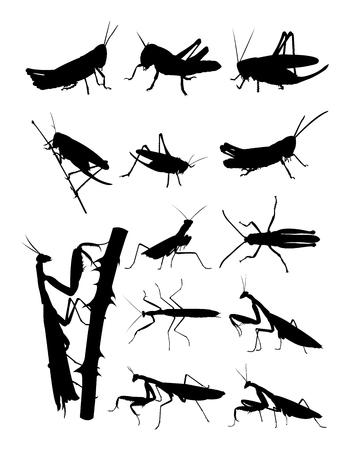 Grasshopper and praying mantis silhouette