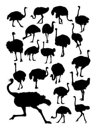 Ostrich silhouette Illustration