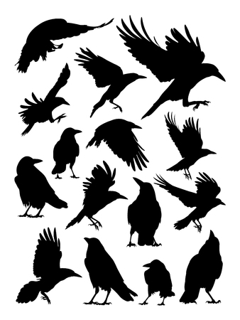 Rook, crow, and raven silhouette